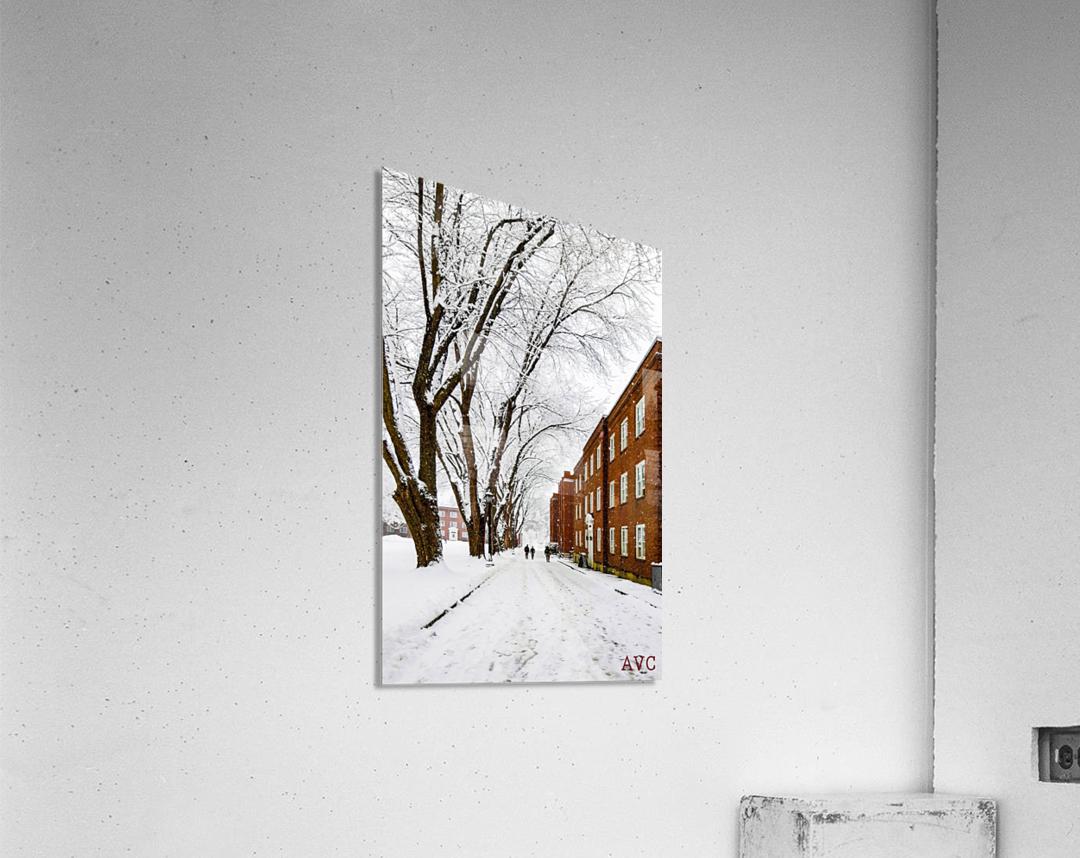 Walk on the UP  Acrylic Print