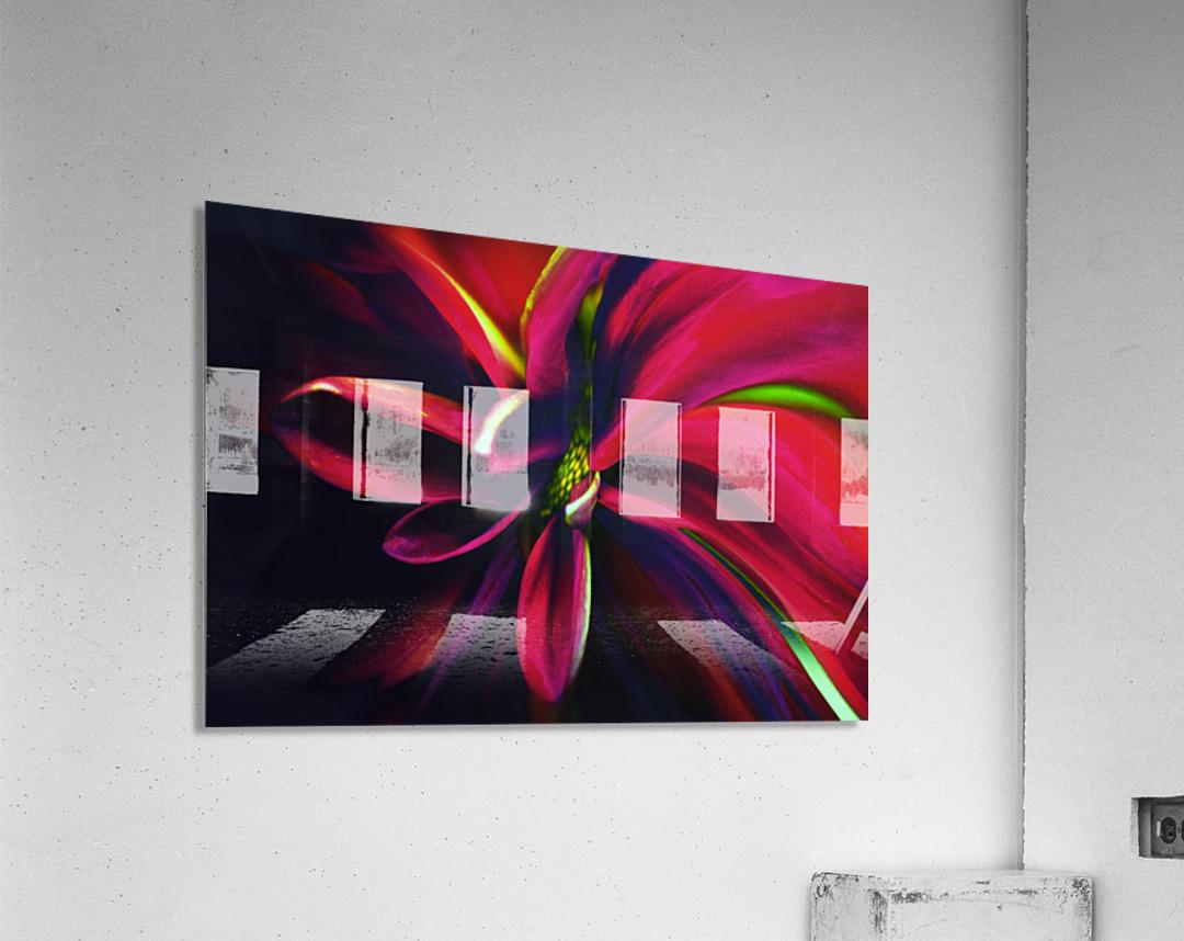 Reaching  Acrylic Print