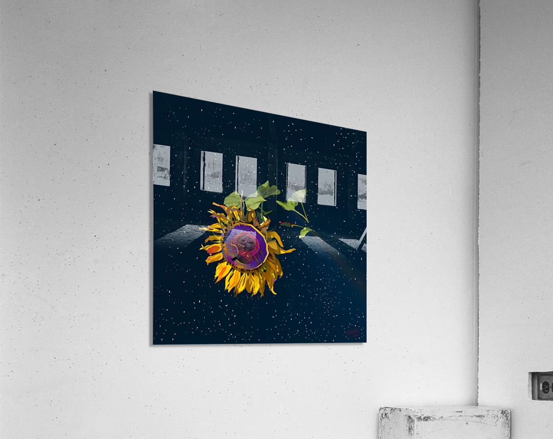 Sunflower in Space  Acrylic Print