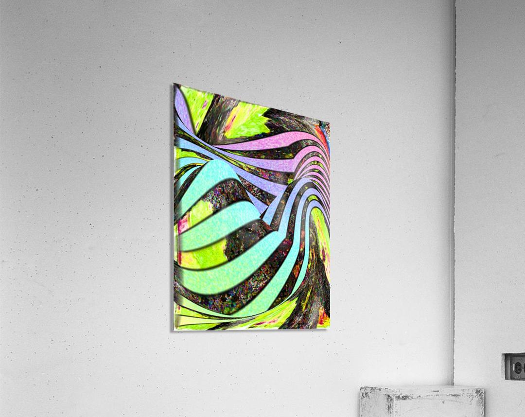 Yipes Its stripes  Acrylic Print