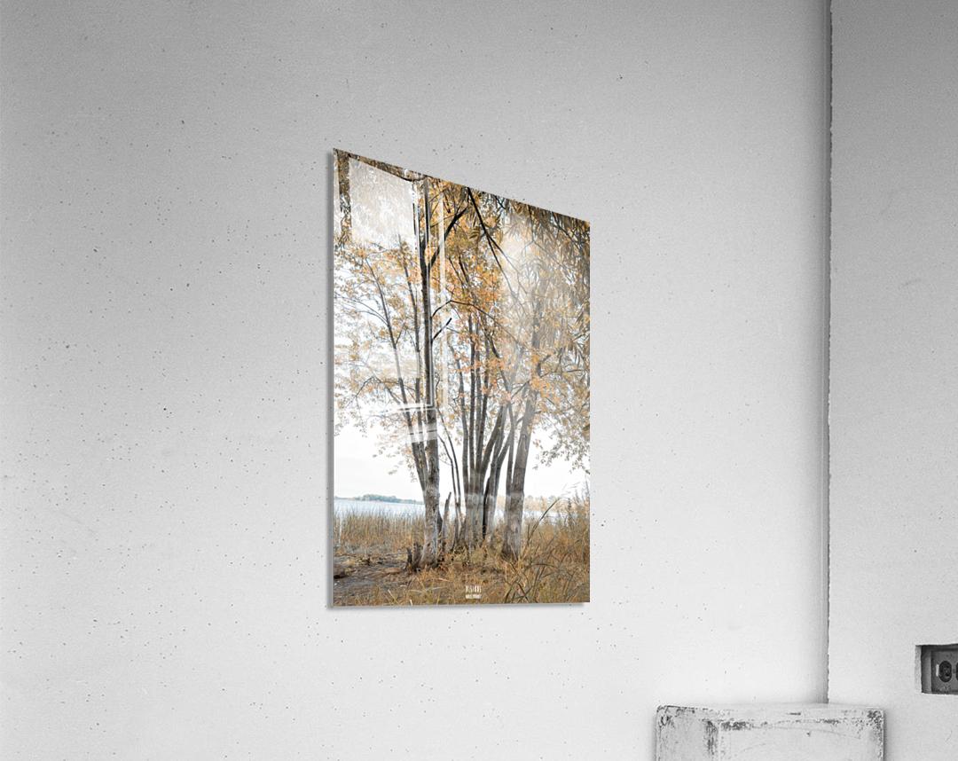 Lumiere automnale 2  Acrylic Print