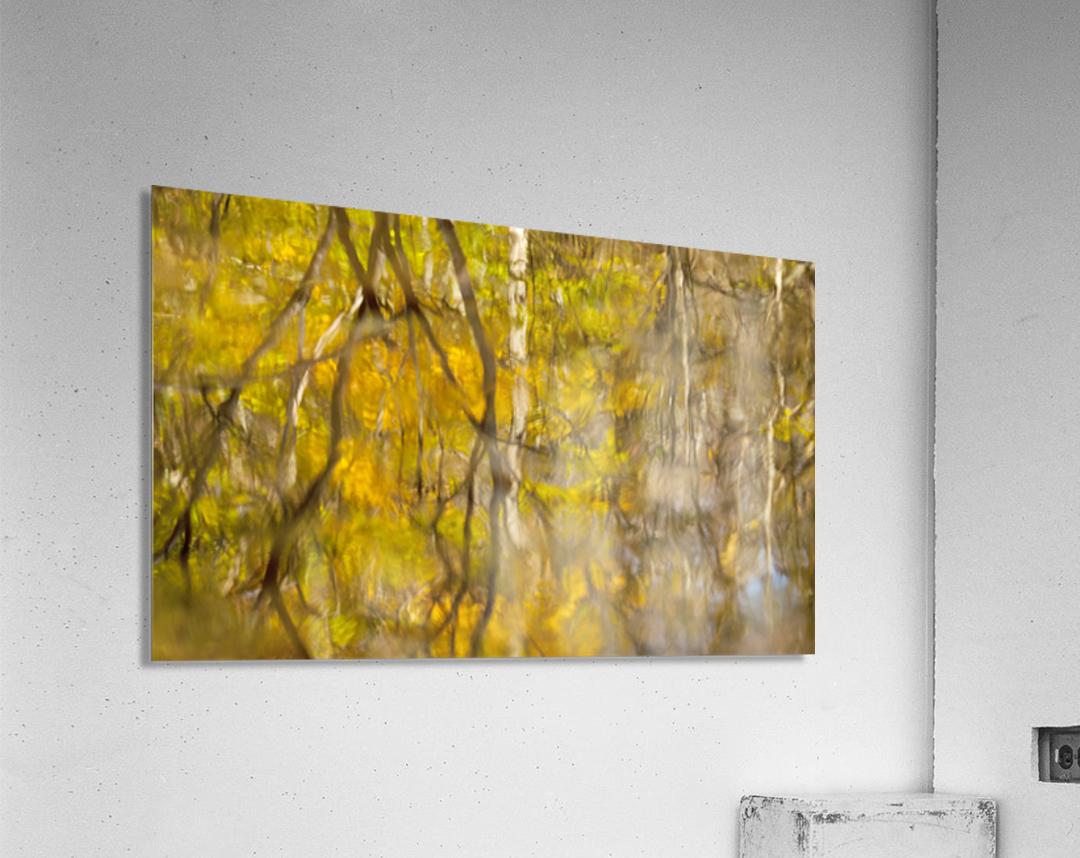 Autumnal swirls reflections  Acrylic Print