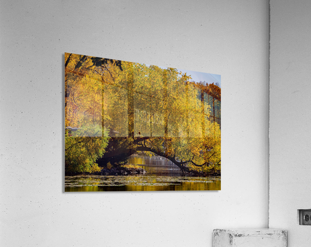 Arc de Treeomph  Acrylic Print