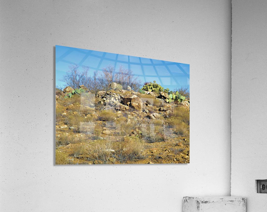 Rock n Cactus  Acrylic Print