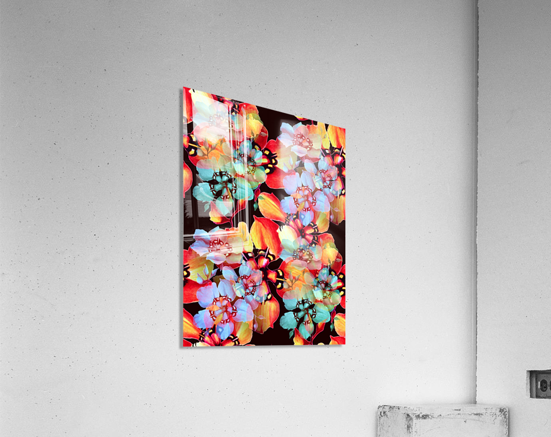 Harlequin Flowers in Watercolor  Acrylic Print
