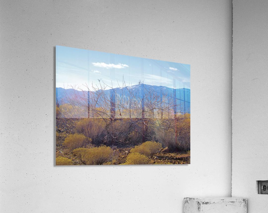 Weeds  Impression acrylique