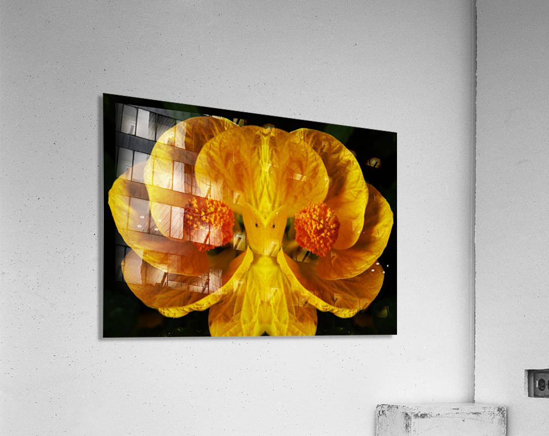 flower91  Acrylic Print