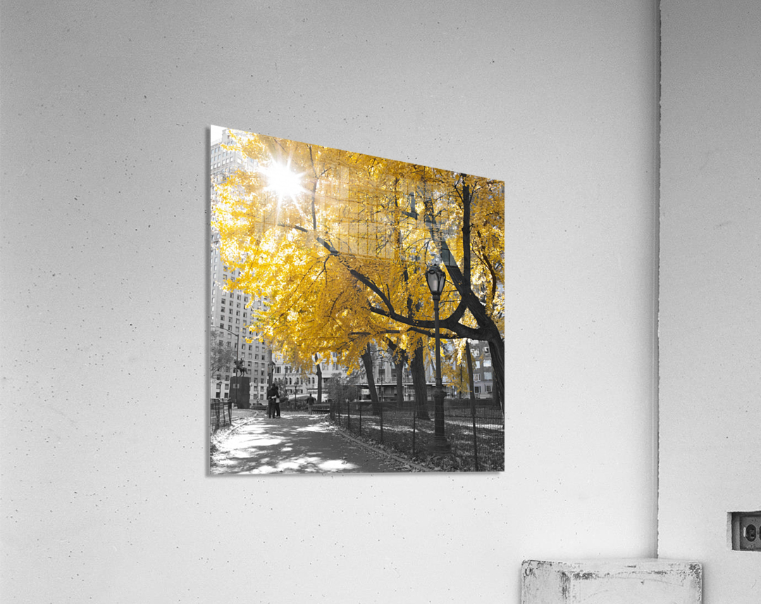 Pathway through Central park, New York City  Acrylic Print
