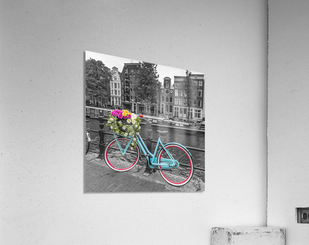 Bicycle with bunch of roses on bridge, Amsterdam  Acrylic Print