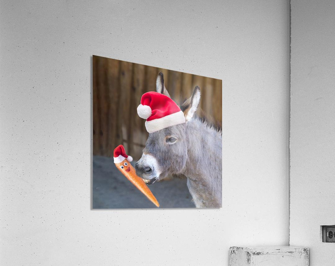 Donkey with Santa hat  Acrylic Print