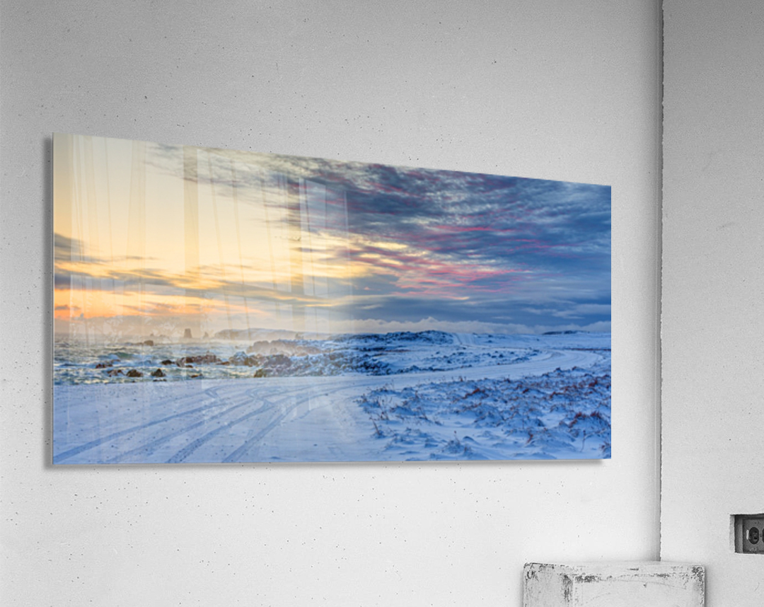 The Colour of Winter  Acrylic Print