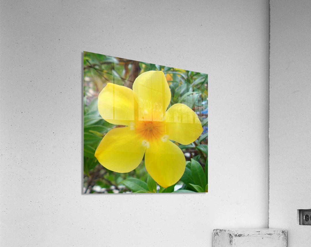 Perfect  Acrylic Print