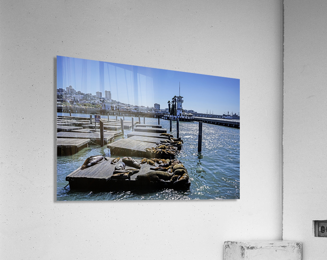 The Wharf @ San Francisco  Acrylic Print