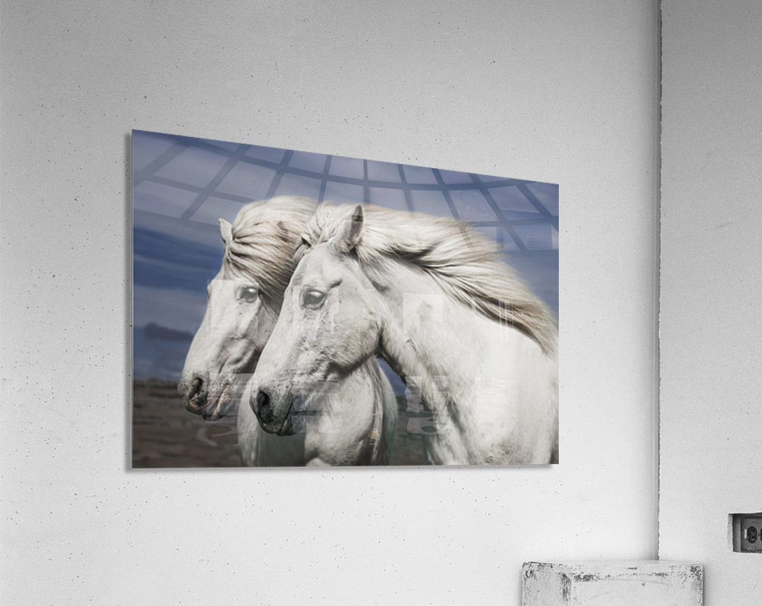 Blowing by Bragi Ingibergsson  Acrylic Print