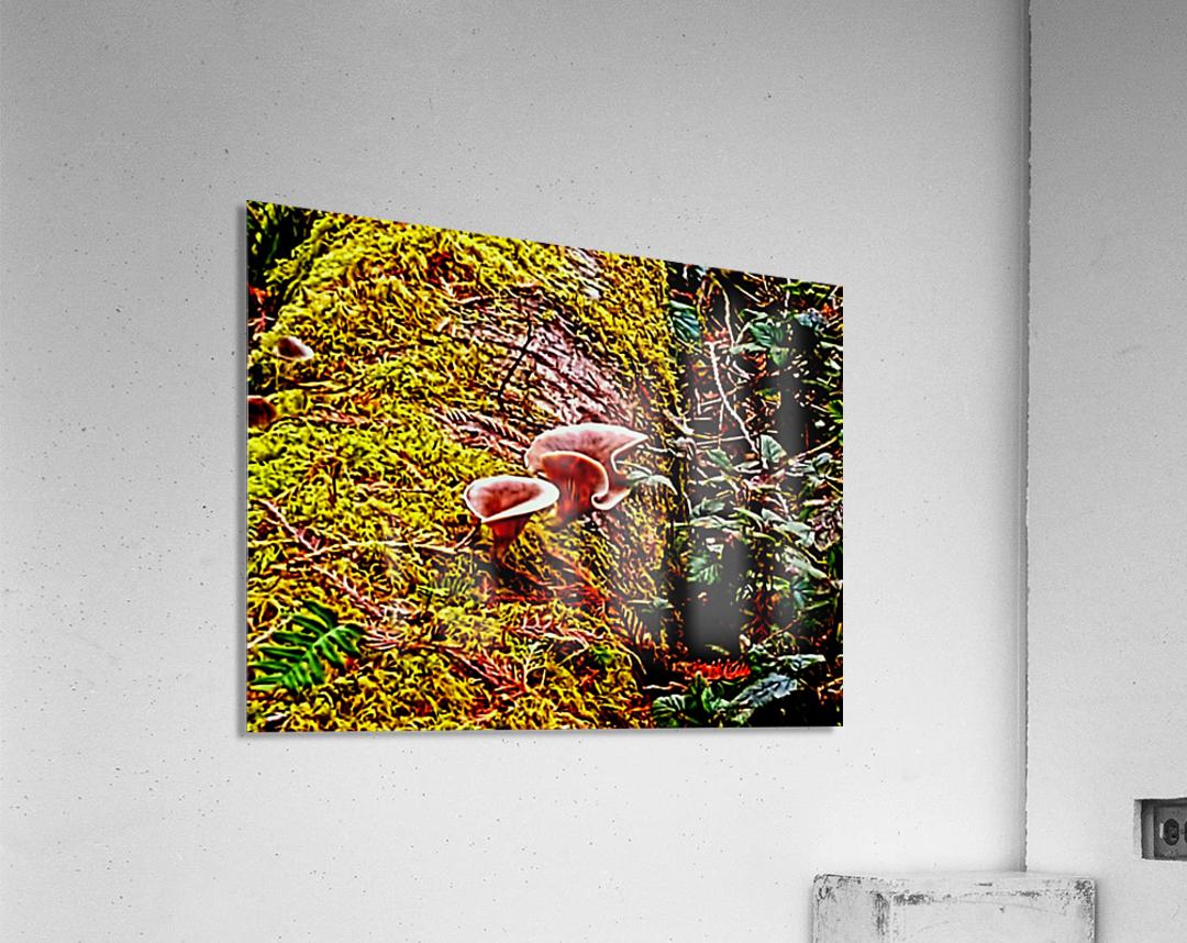 Tiny World 3 of 8  Acrylic Print