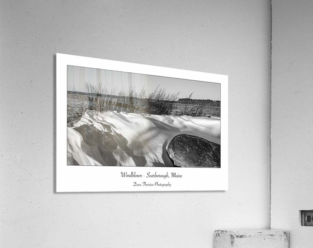 Windblown  Acrylic Print