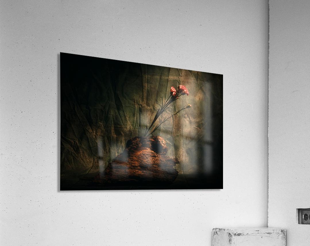 Montagne et Zen  Acrylic Print