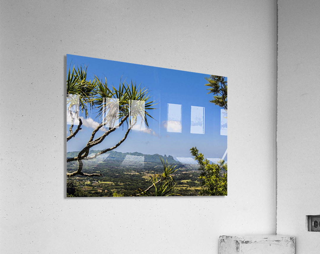 View to Forever  Acrylic Print