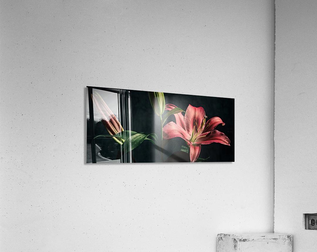 Floraison 1  Acrylic Print