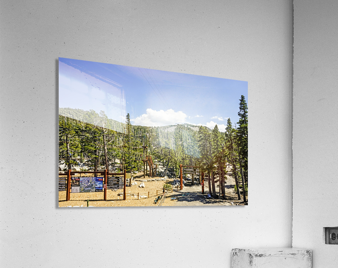 Spring at Lake Tahoe 4 of 7  Acrylic Print