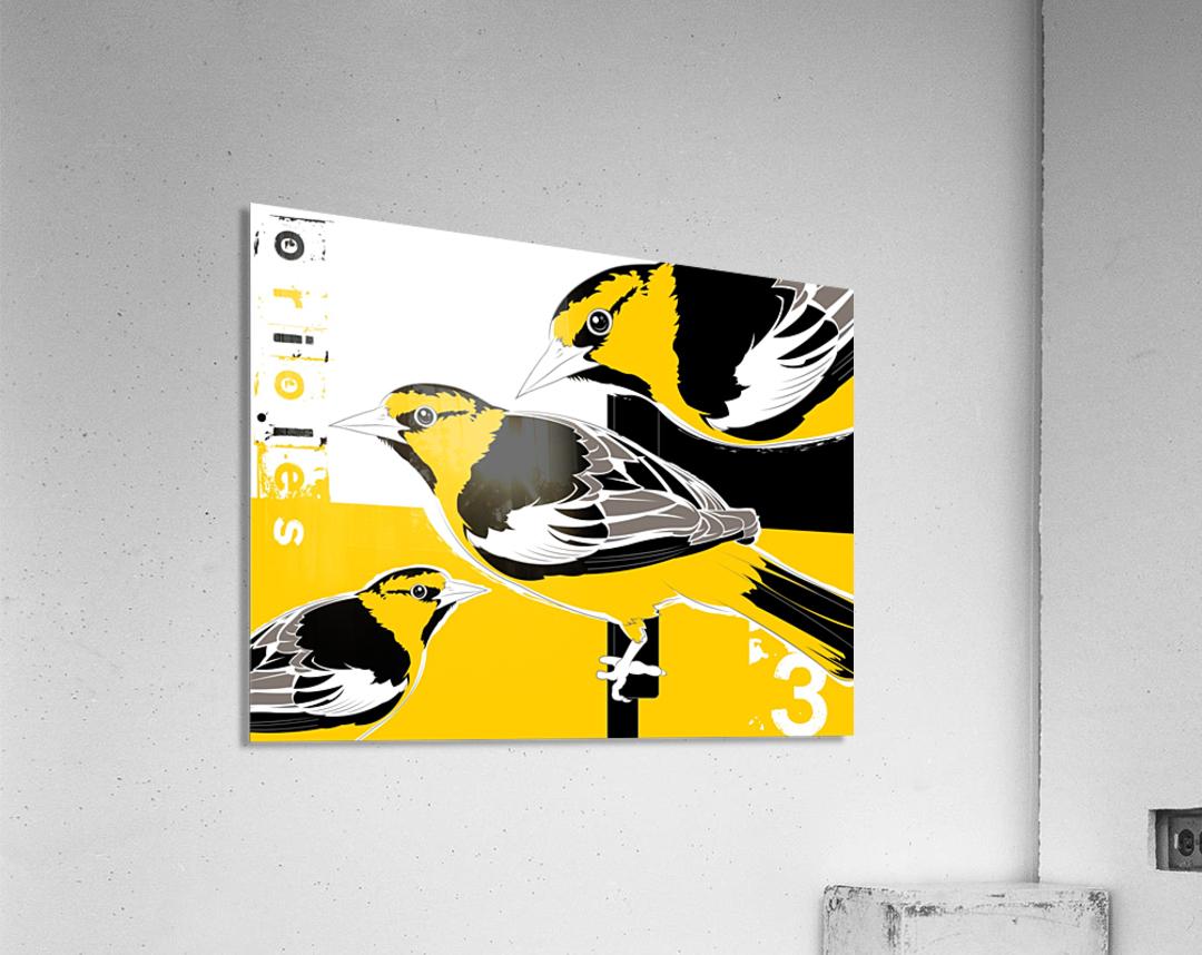 Orioles40x30  Impression acrylique