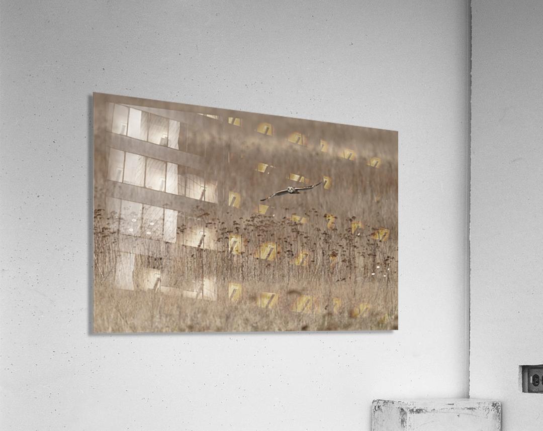 Wesley Allen Shaw 01435  Acrylic Print