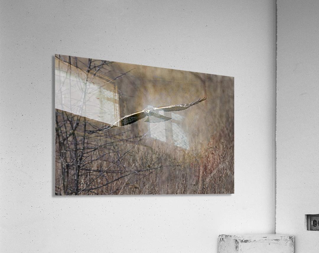Wesley Allen Shaw 02102 1609734999.9044  Acrylic Print