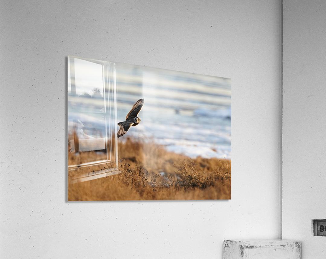 Wesley Allen Shaw 04091  Acrylic Print