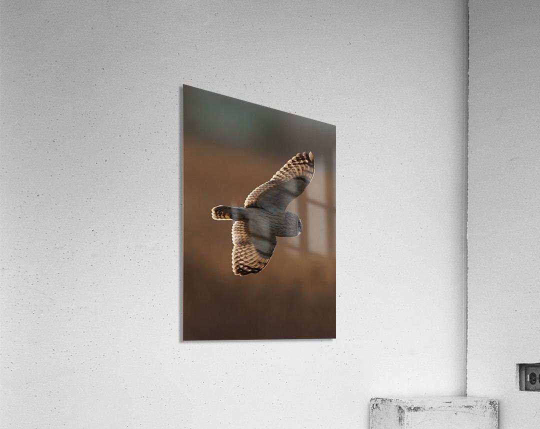 Wesley Allen Shaw 09068  Acrylic Print