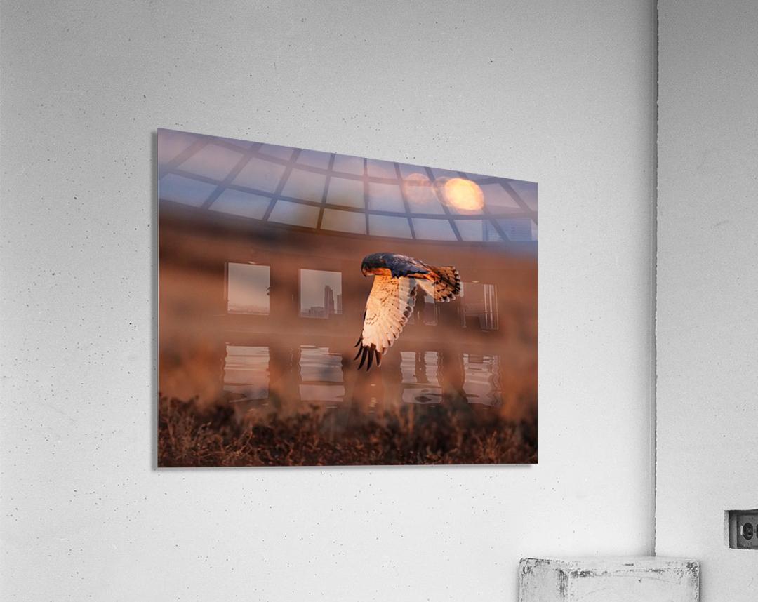 Wesley Allen Shaw 04277  Acrylic Print