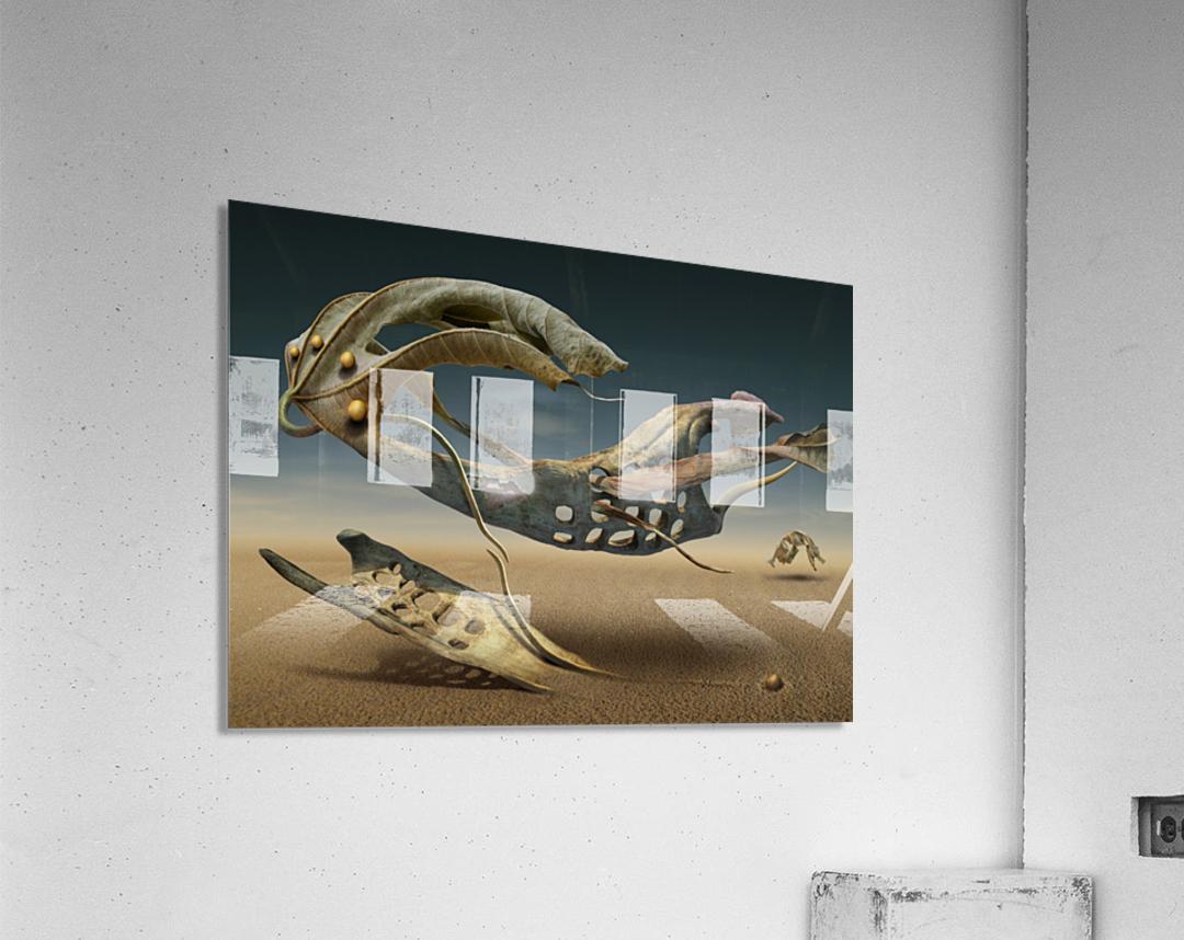 K_214  Acrylic Print