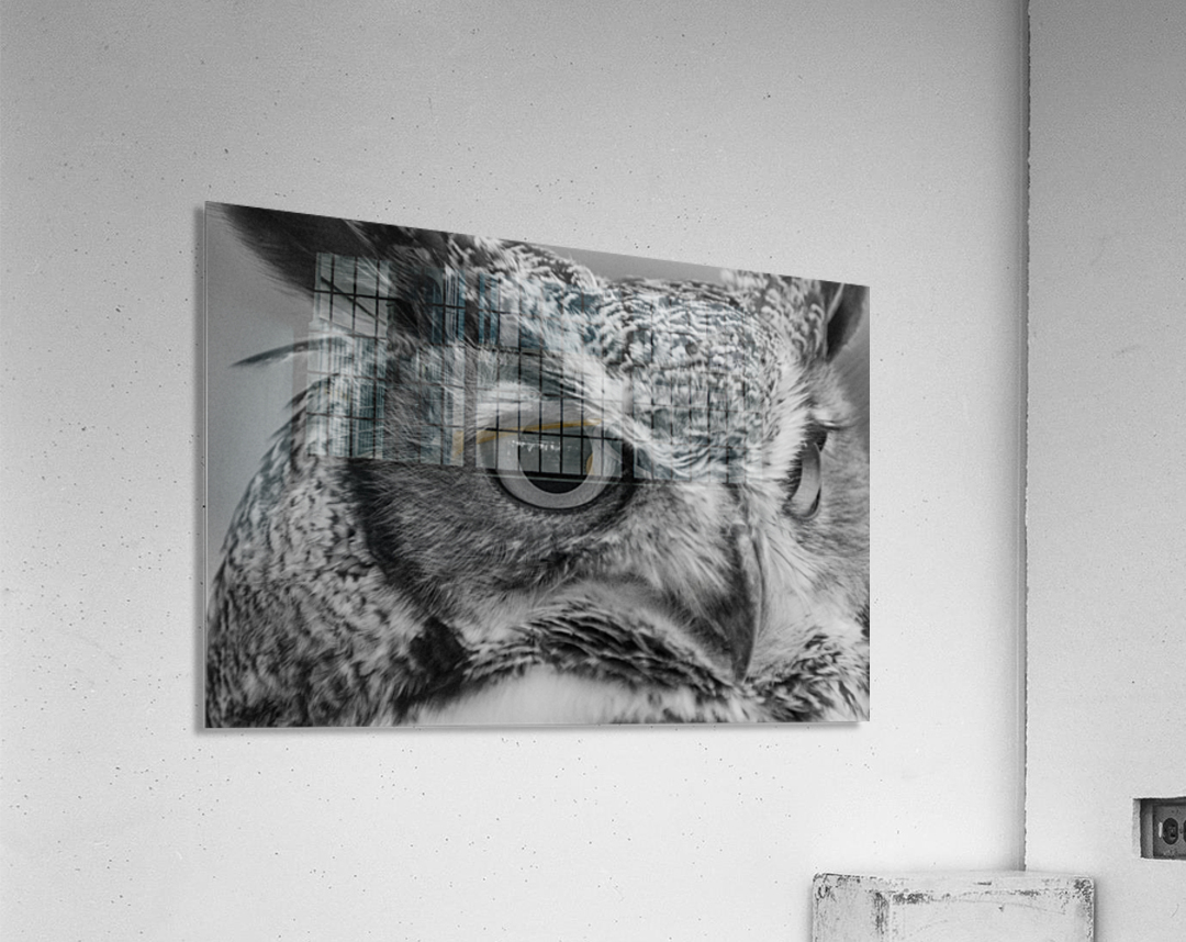 20181021 DSC 0228  2  1 2  Acrylic Print