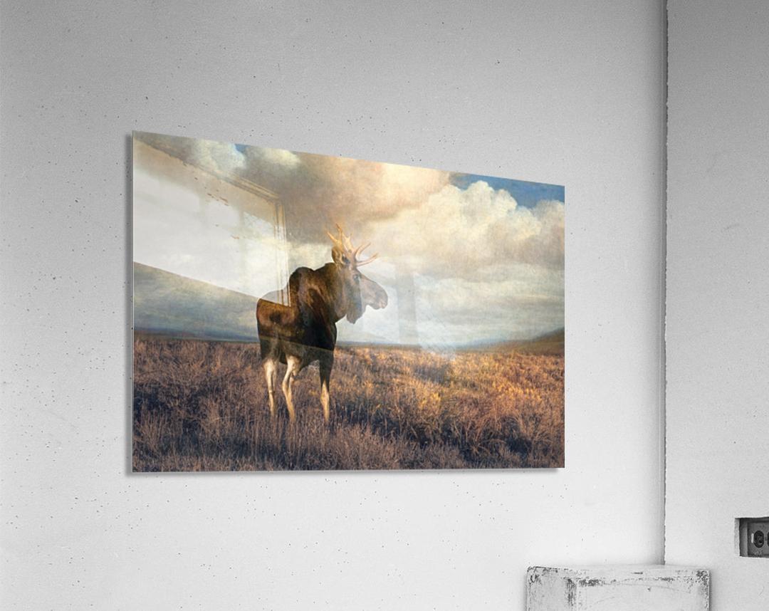 20201101  DSC4194 txtr  Acrylic Print