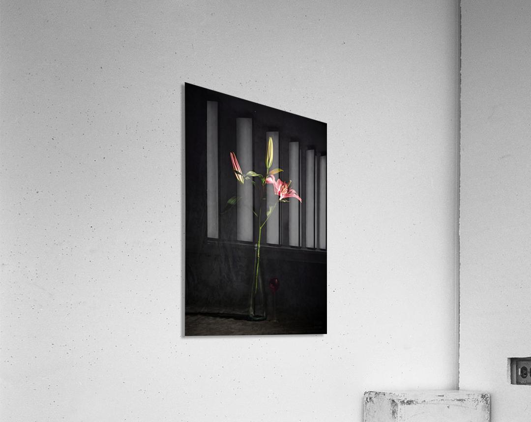 Etude Zen 4f  Acrylic Print