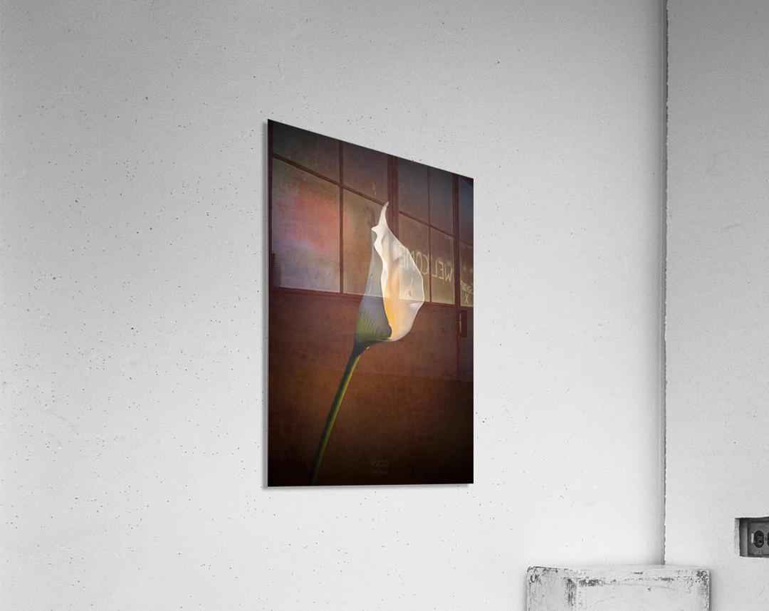 Etude Zen 7b  Acrylic Print