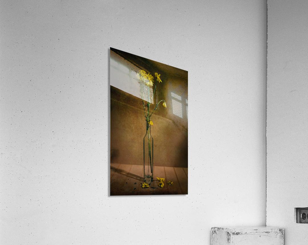 Etude Zen 7c  Acrylic Print