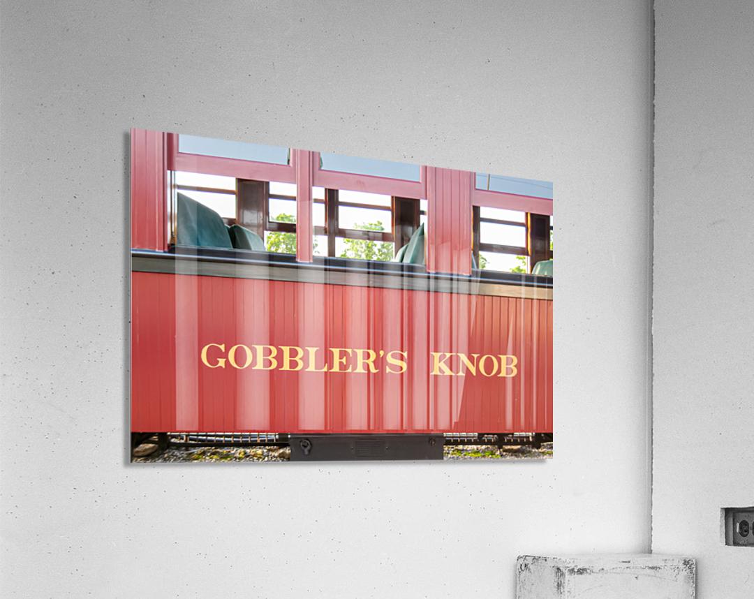 Strasburg 0170  Acrylic Print
