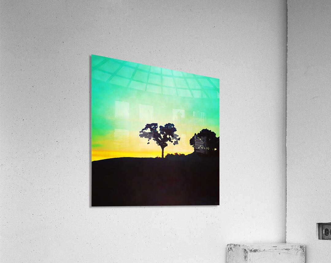 hill tree  Acrylic Print