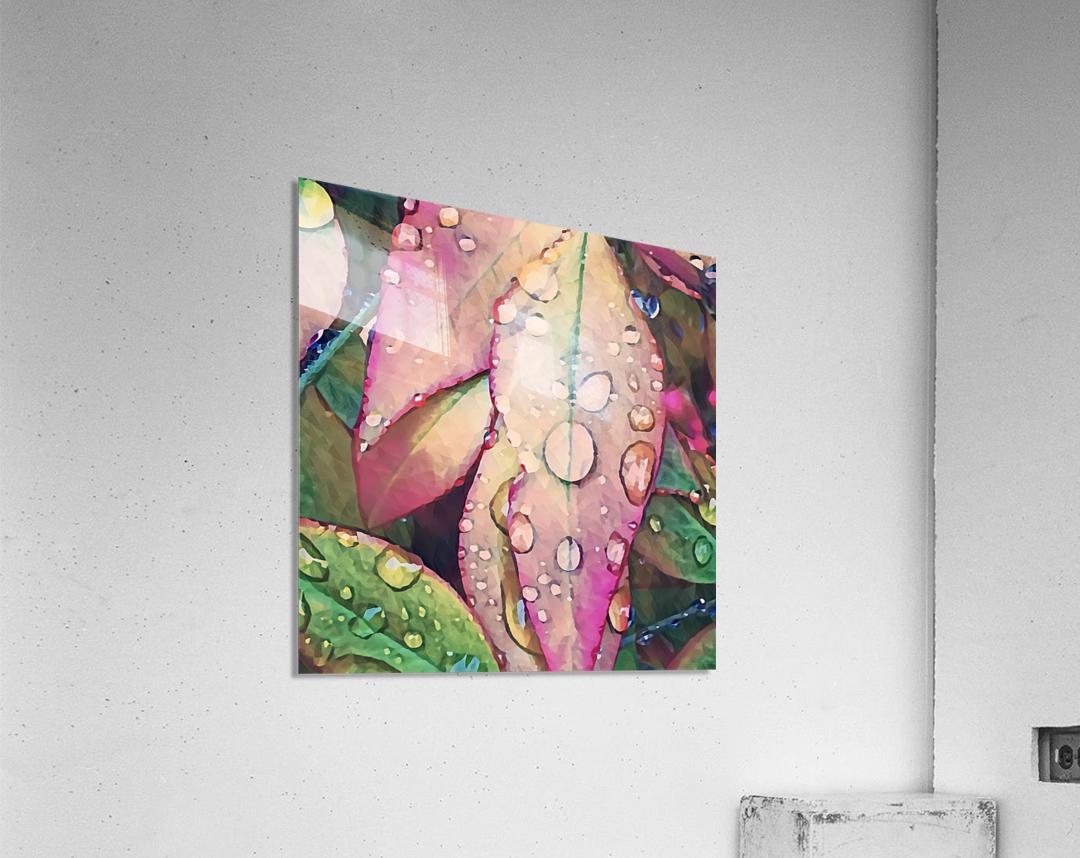 water leaves  Acrylic Print