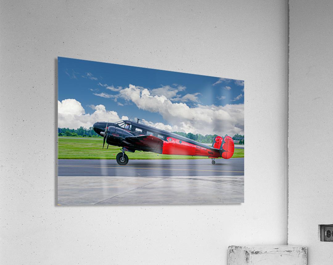 Beech B18  Acrylic Print
