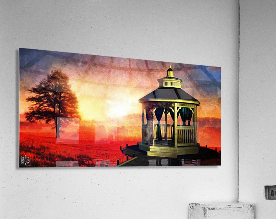 Backyard  Acrylic Print