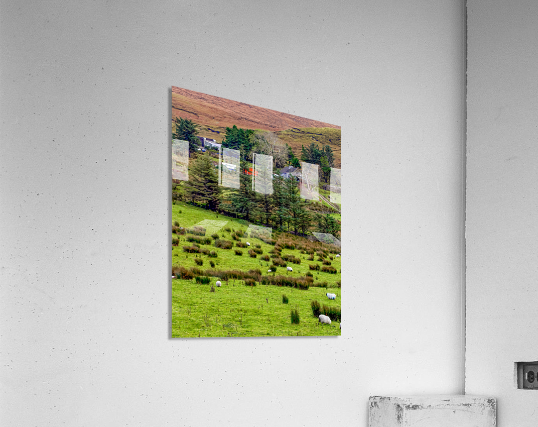 Donegal 7  Acrylic Print