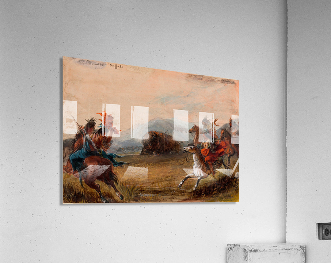 Wounded Buffalo  Acrylic Print