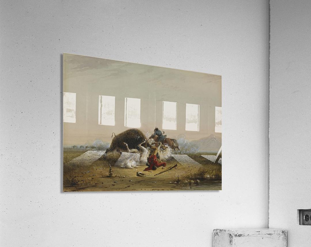 Pierre and the Buffalo  Acrylic Print
