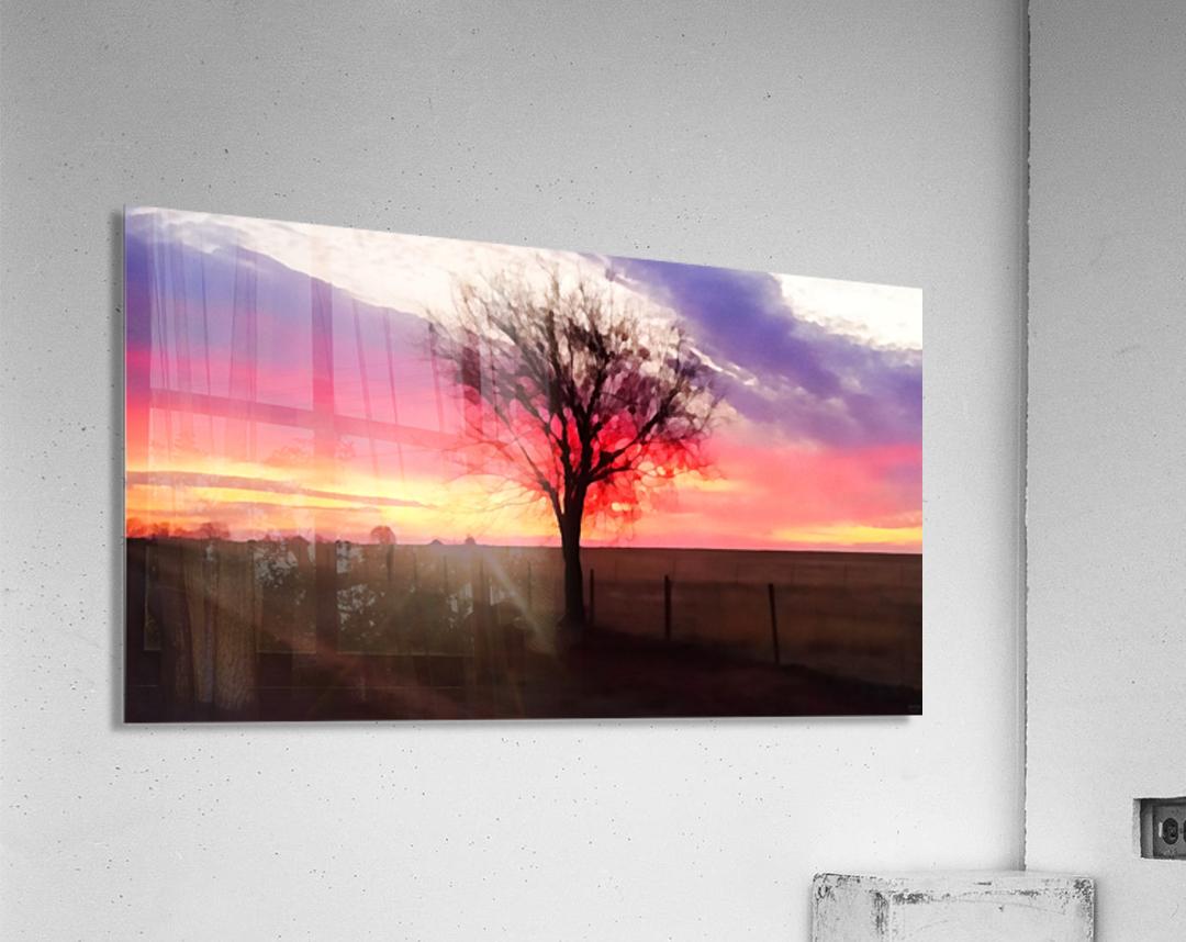 still morning  Acrylic Print