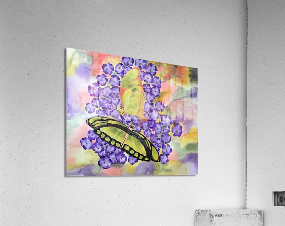 Emergence IV  Acrylic Print