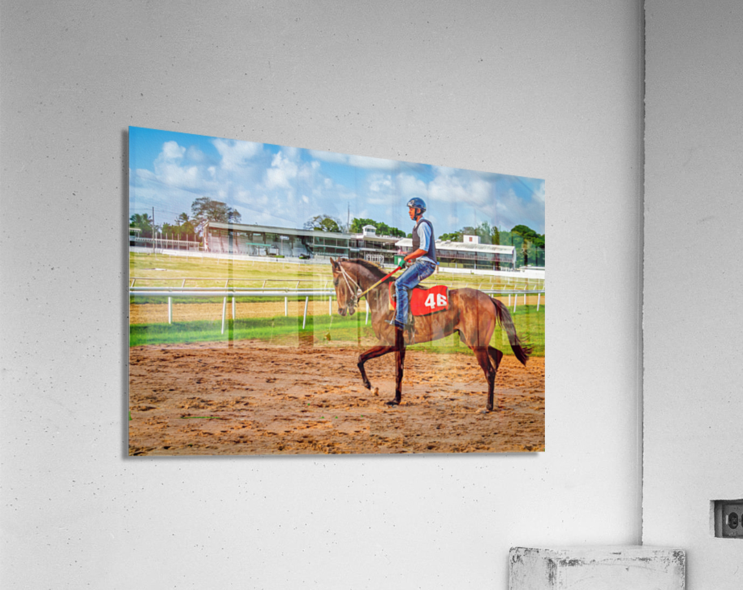 Racehorse04  Acrylic Print