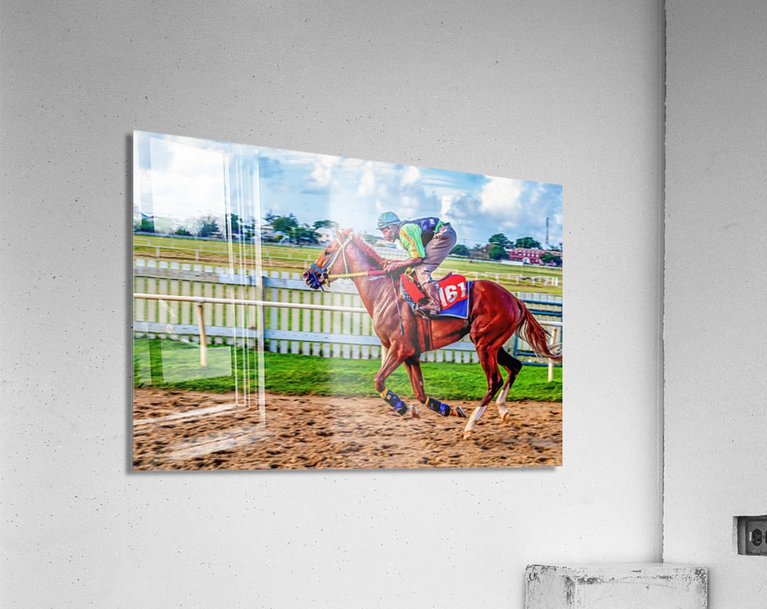 Racehorse10  Acrylic Print