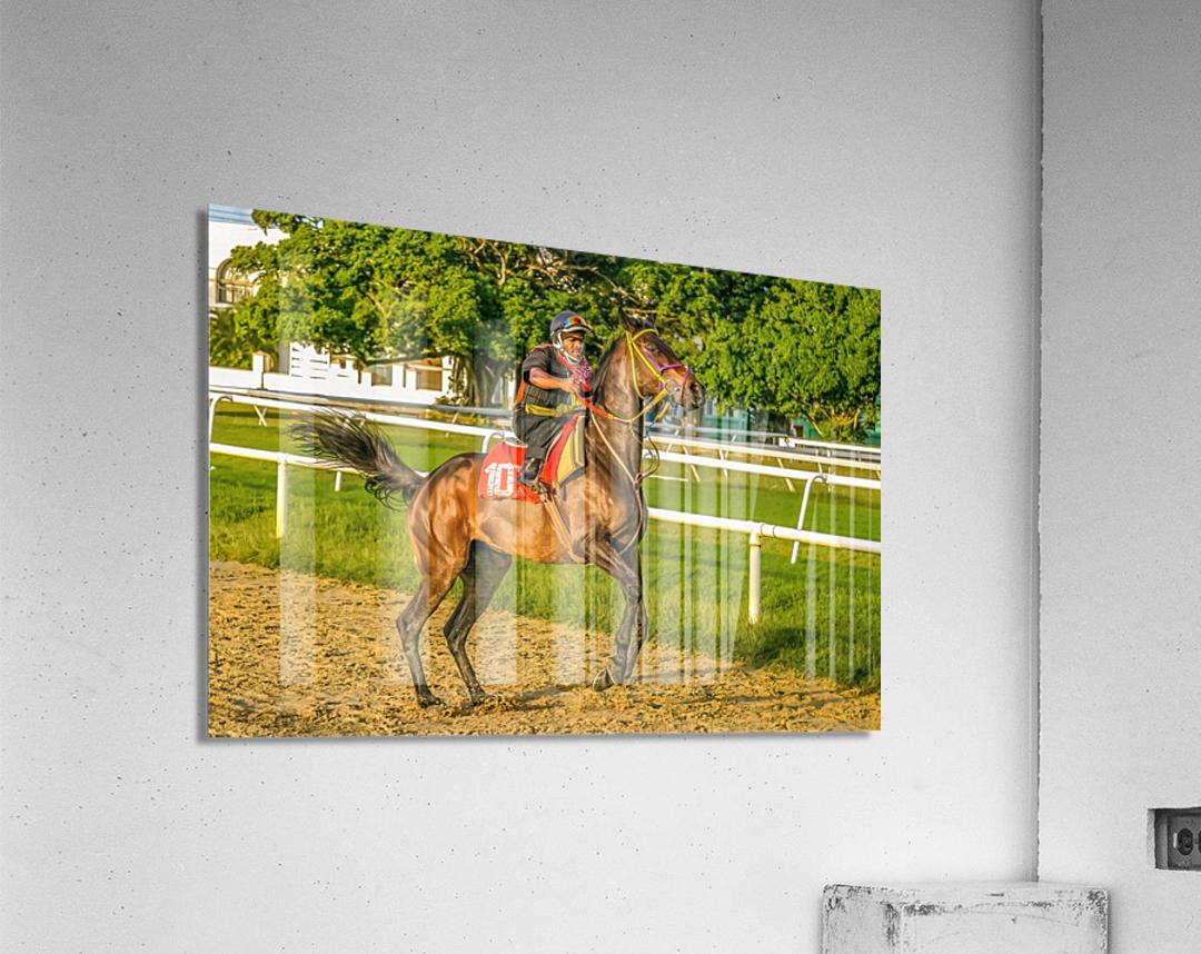 Racehorse12  Acrylic Print