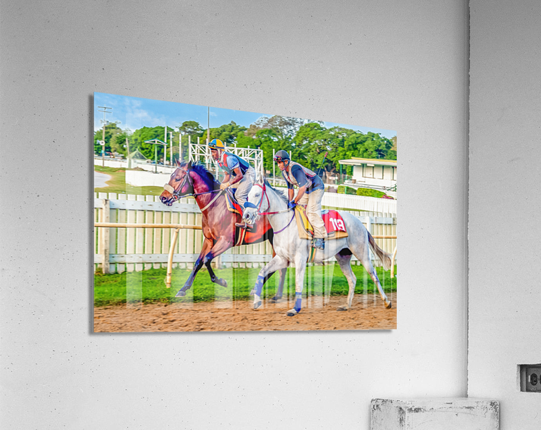 Racehorse08  Acrylic Print